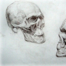 Рисунки учеников 19