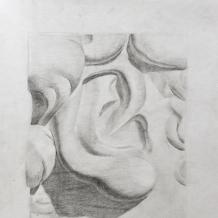 Рисунки учеников 21