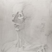 Рисунки учеников 36