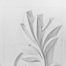 Рисунки учеников 51